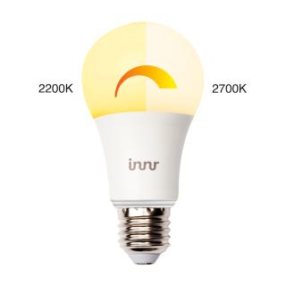 RB 175 W Lamp